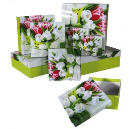 Gift Box Green with Tulip Design Set of 8 - 22.5 x 22.5 x 8cm