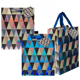 Gift Bag Triangle Design, 180 x 100 x 230mm Assorted Colour