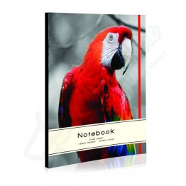 A* Parrot Design Hard Cover Notebook with Elastic Band Ruled A5